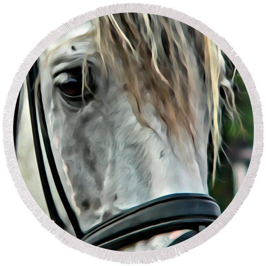 Horse Andalusian Portrait Head Round Beach Towel featuring the photograph Andalusian Eye by Alice Gipson