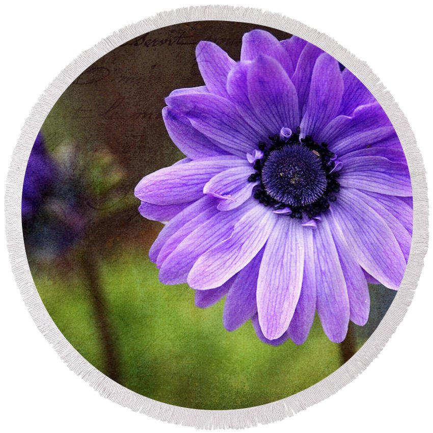 Anemone Round Beach Towel featuring the photograph Anemone Kissed by Sharon Talson