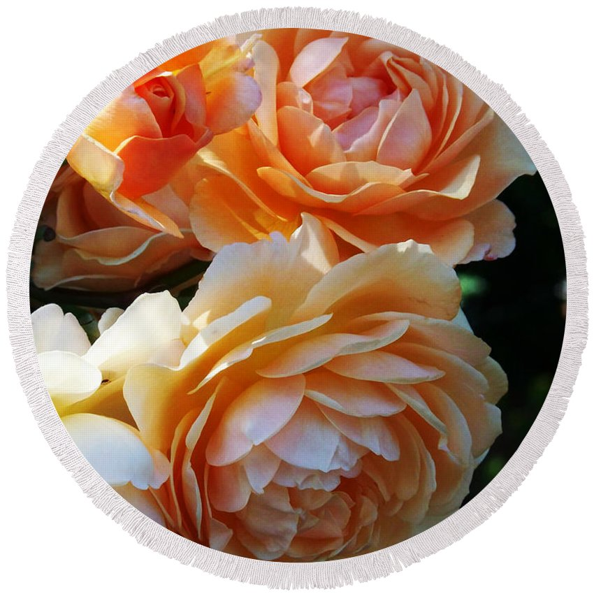 Flowers. Plants Round Beach Towel featuring the photograph Apricot Dahlias by Kathy McClure