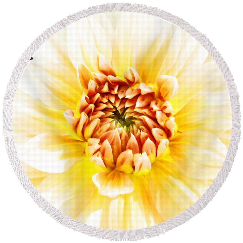 Dahlia Round Beach Towel featuring the photograph As Golden As A Summer's Day by Steve Taylor