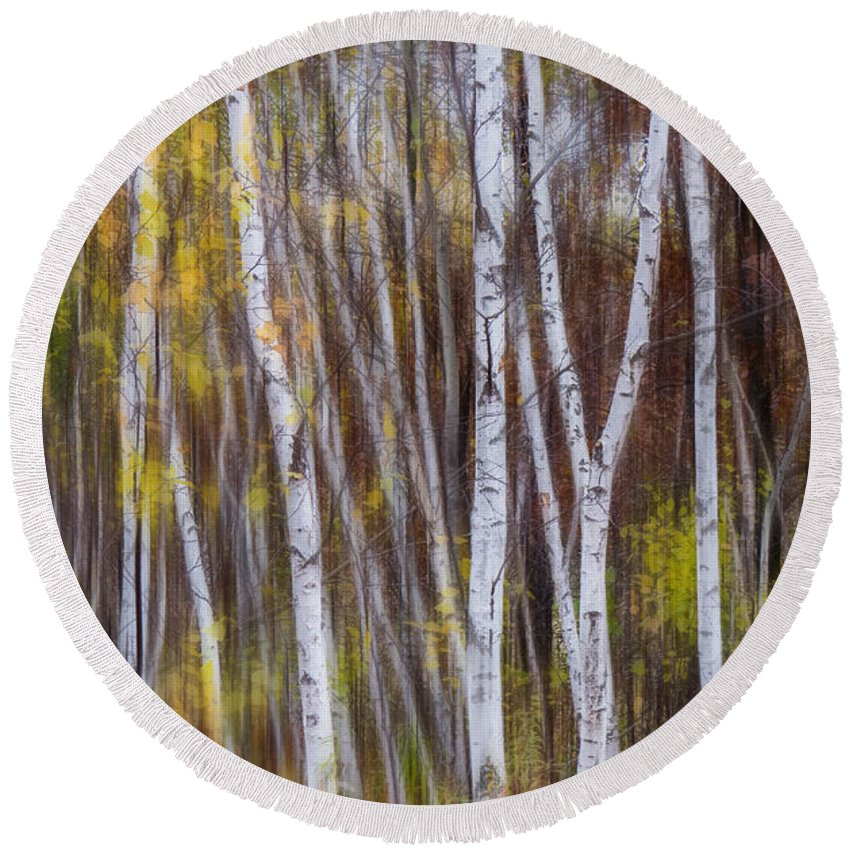 Birch Round Beach Towel featuring the photograph Birch Trees At Lake Maria State Park Minnesota by Patti Deters