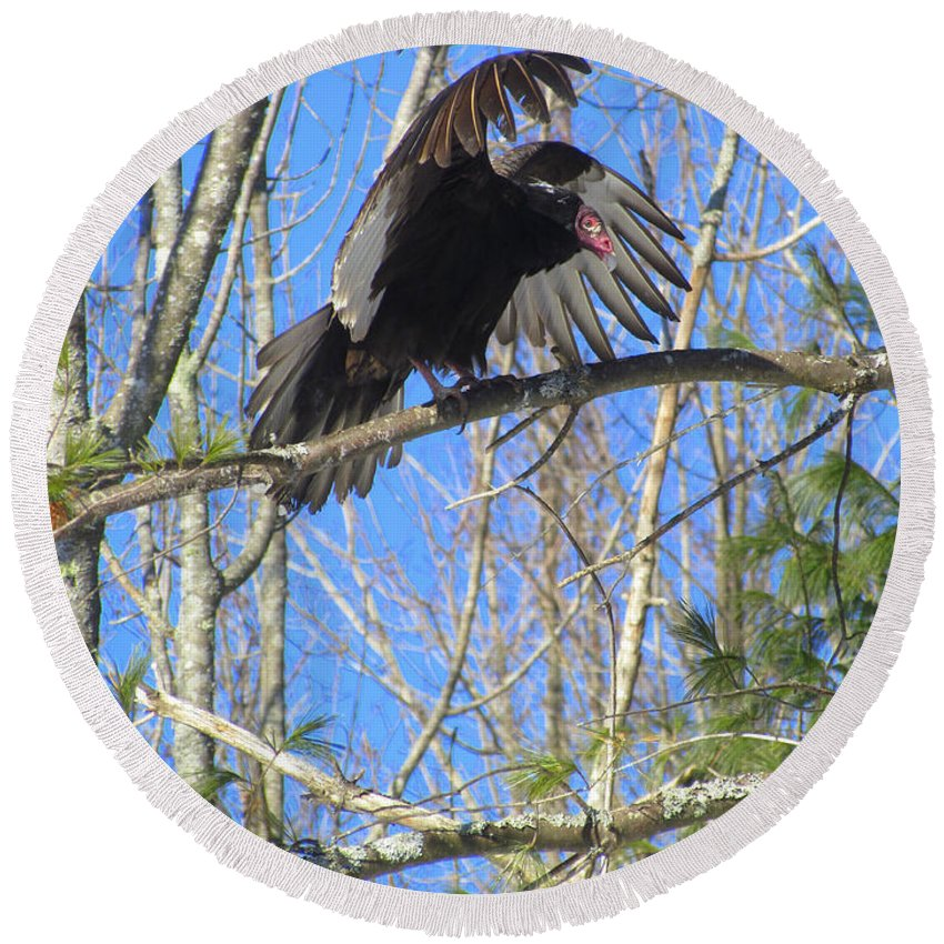 Turkey Vulture Round Beach Towel featuring the photograph Attack Of The Turkey Vulture by Elizabeth Dow