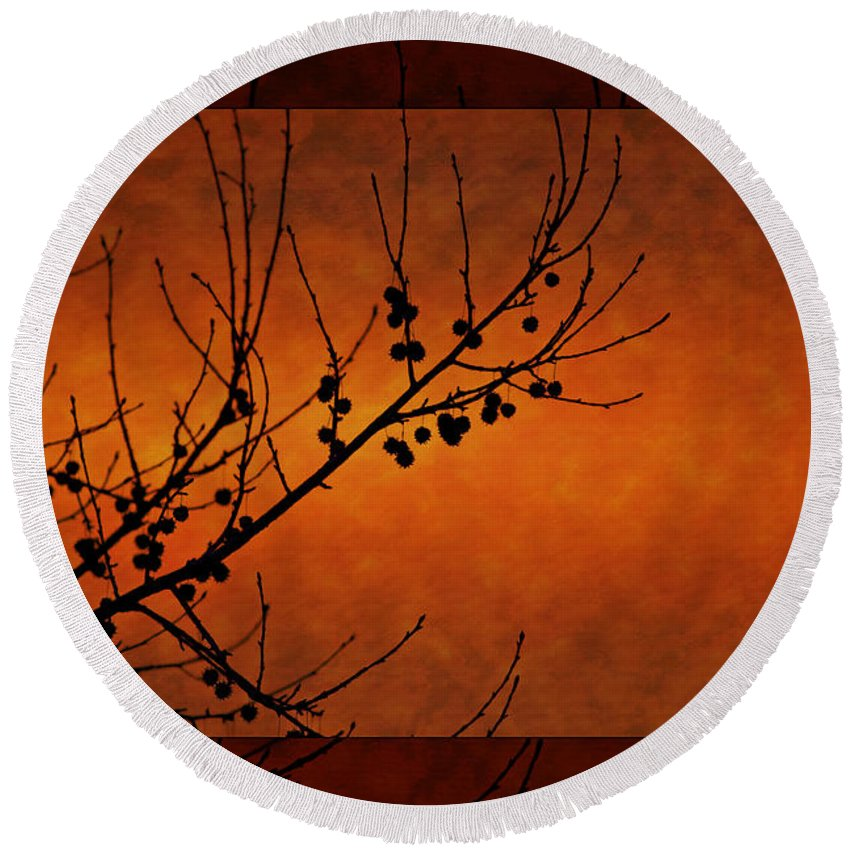 Landscape Branch Bark Nuts Fall Autumn Red Orange Tree Mat Light Dark Scenic Simple Decorative Picture Painting Photograph Sunset Round Beach Towel featuring the photograph Autumn Branches by Angela Stanton