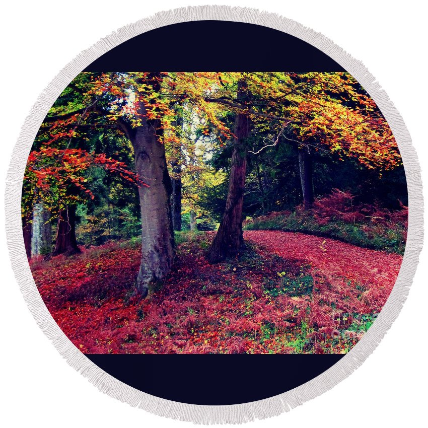 Woodland Round Beach Towel featuring the photograph Autumn Carpet In The Enchanted Wood by Callan Art