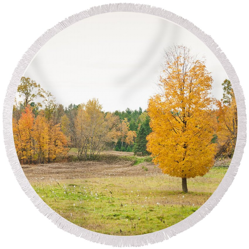 Landscapes Round Beach Towel featuring the photograph Autumn Field by Cheryl Baxter