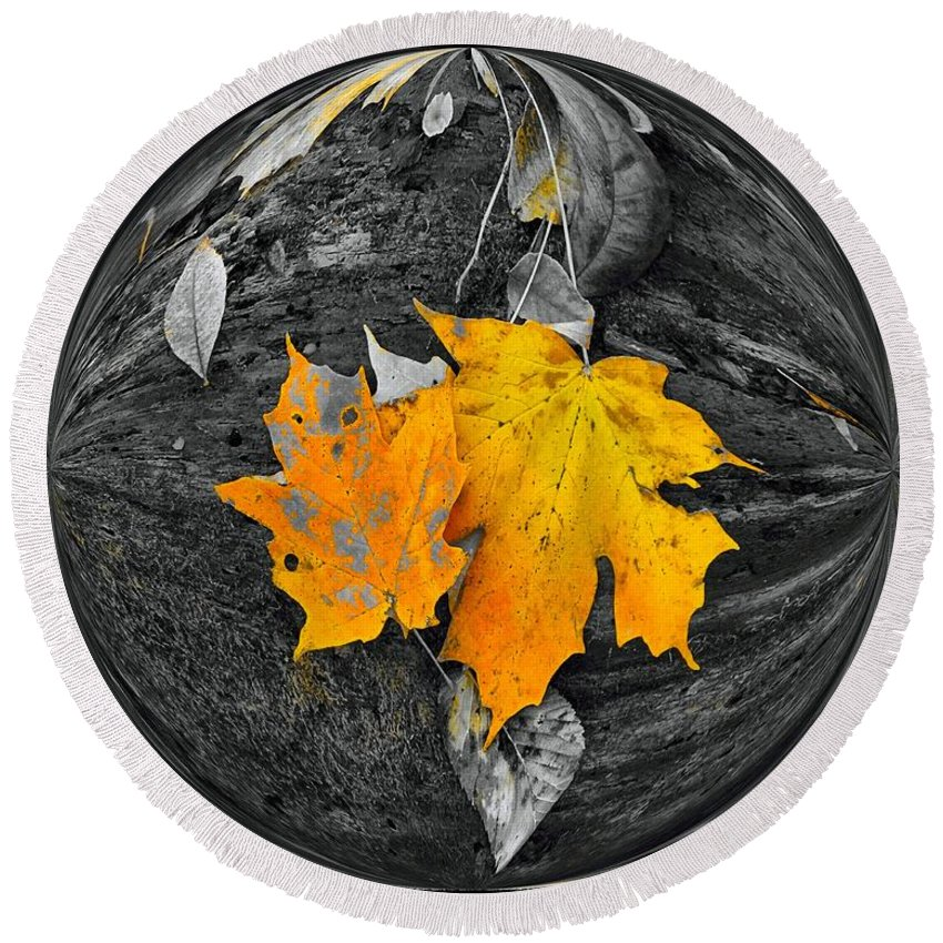 Autumn In Color Round Beach Towel featuring the photograph Autumn In Color by Dan Sproul