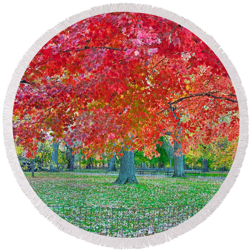 Autumn Round Beach Towel featuring the photograph Autumn In Central Park by Barbara Manis