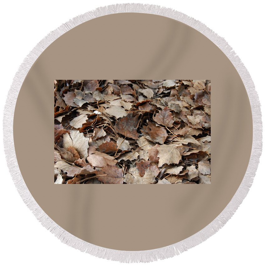 Autumn Round Beach Towel featuring the photograph Autumn Leaves by Gina Dsgn
