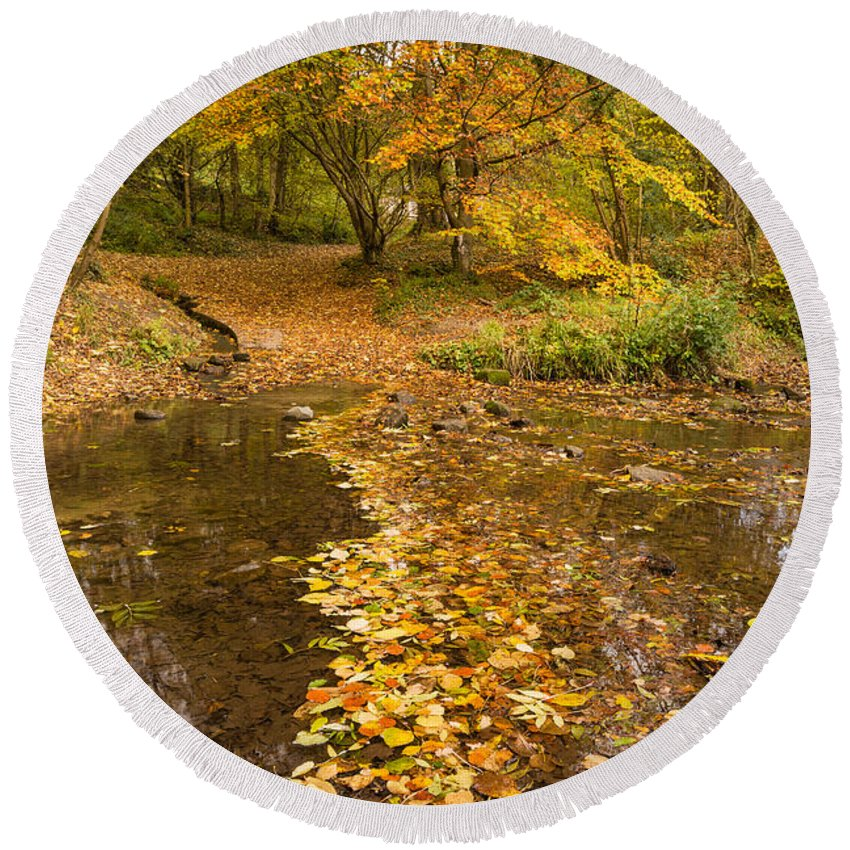 Northumberland Round Beach Towel featuring the photograph Autumn Leaves In Burn Vertical by David Head