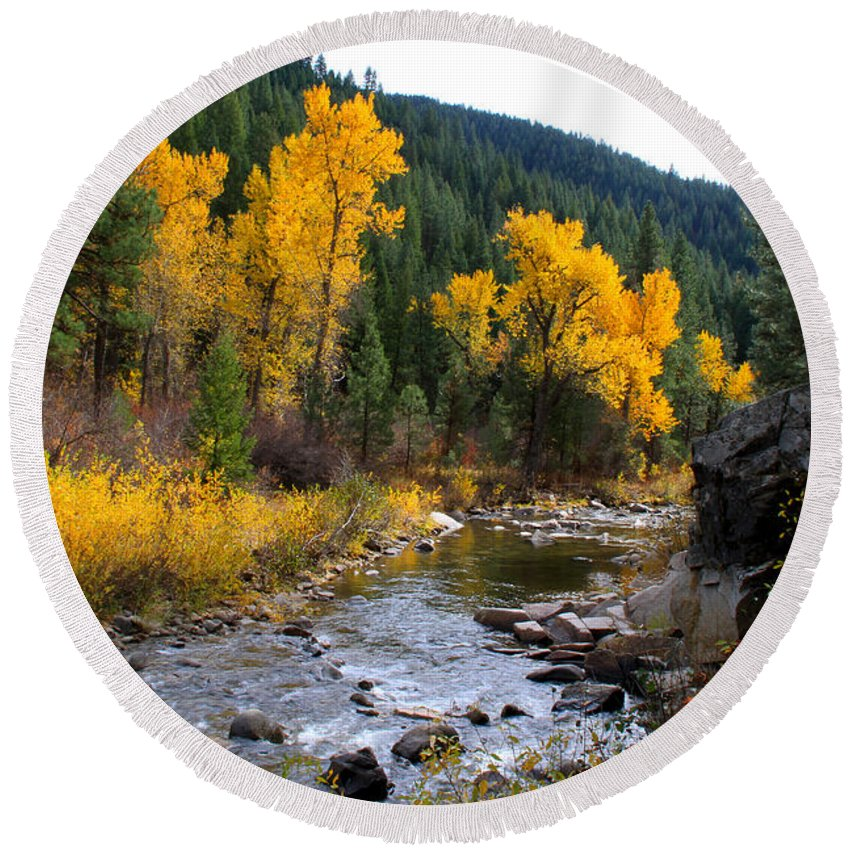 Idaho Round Beach Towel featuring the photograph Autumn Leaves Of Red And Gold by Ed Riche