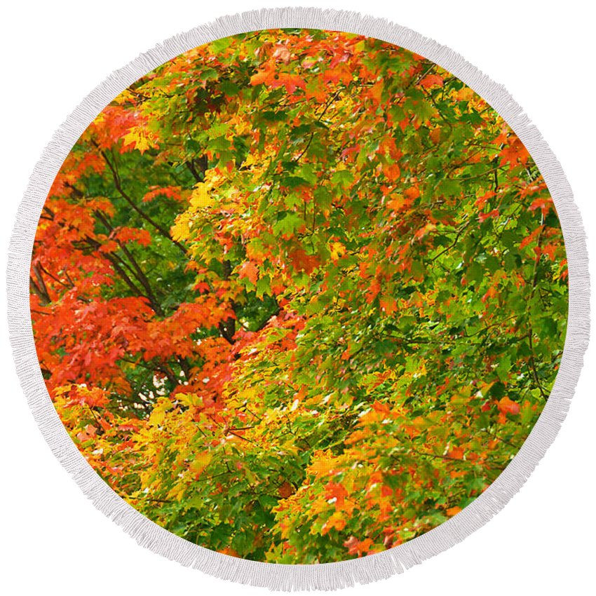 New Jersey Round Beach Towel featuring the photograph Autumn Mosaic Nj by Regina Geoghan