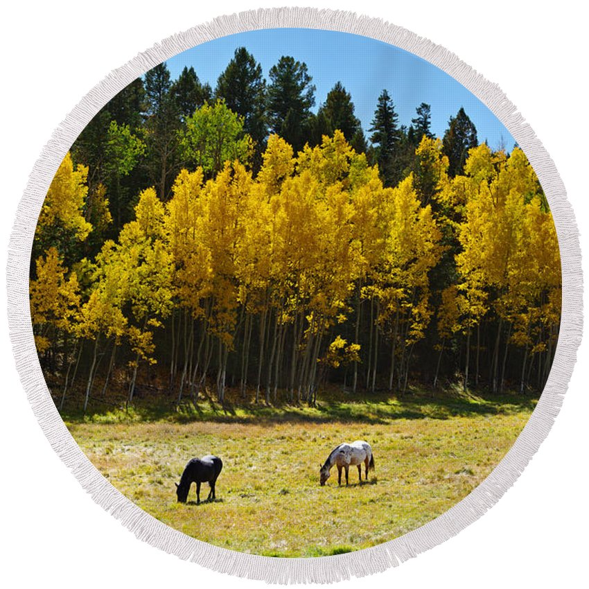 Colorado Photographs Round Beach Towel featuring the photograph Autumn Pasture by Gary Benson