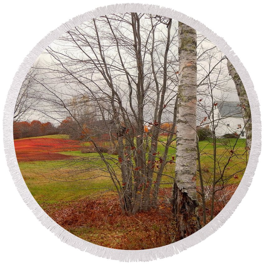 White Birches Rolling Green Lawn Bright Foliage And A Weird Beautiful Natural Ref Field Route 17 Maine Round Beach Towel featuring the photograph Autumn Red Field Maine by Expressionistart studio Priscilla Batzell