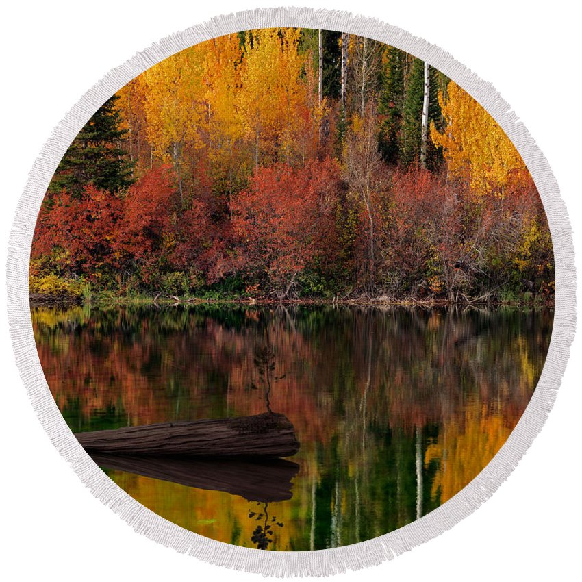 Aspen Forest Round Beach Towel featuring the photograph Autumn Reflections by Leland D Howard