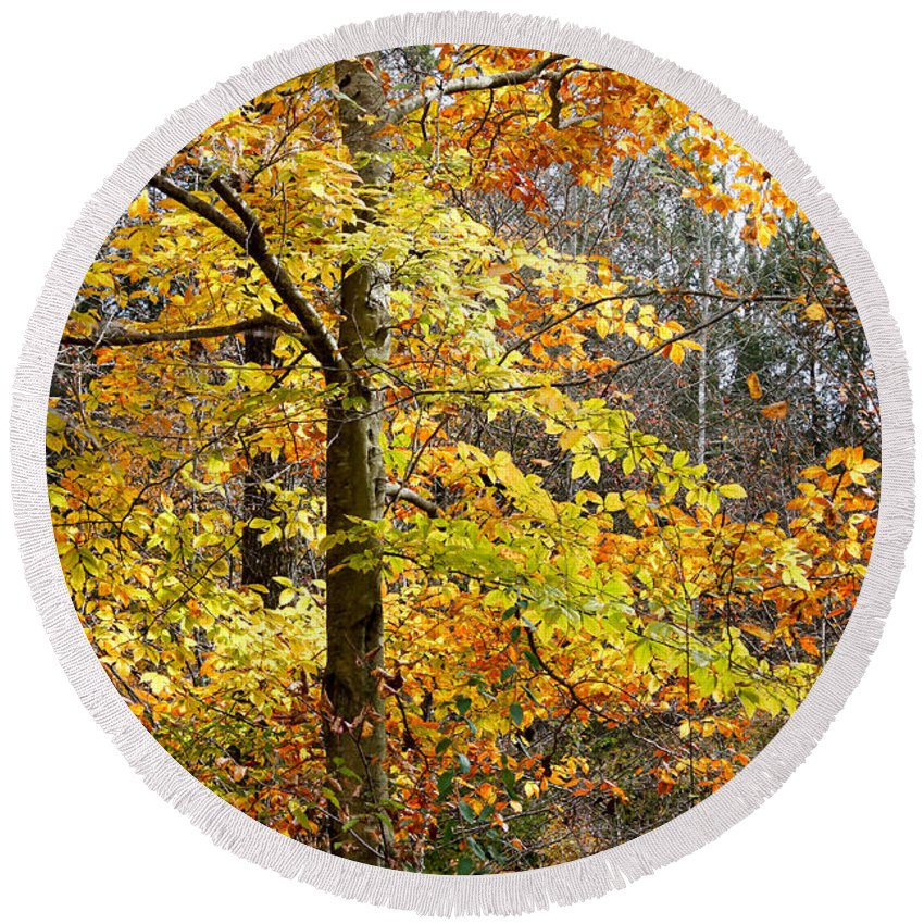 Landscape Round Beach Towel featuring the photograph Autumn Splendor by Todd Blanchard