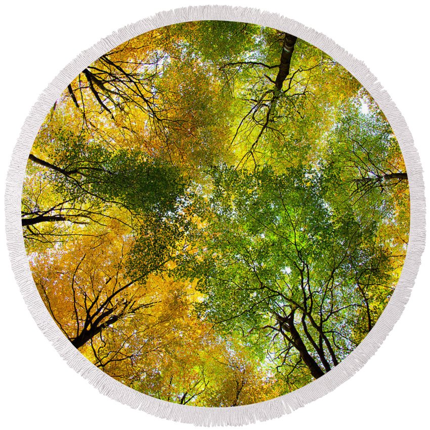 Autumn Round Beach Towel featuring the photograph Autumnal Display by Dave Bowman