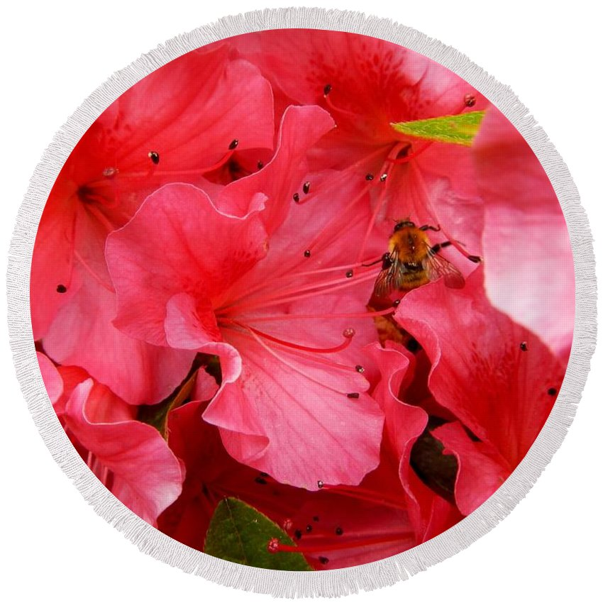 Floral Round Beach Towel featuring the photograph Azalea Flowers by Loreta Mickiene