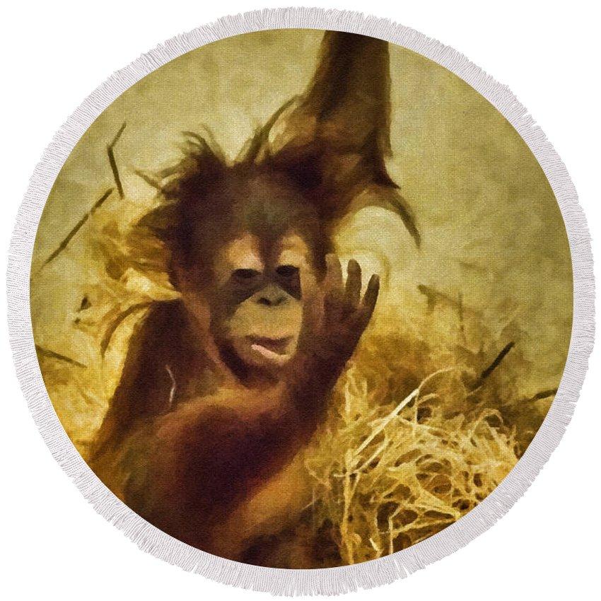 Orangutan Round Beach Towel featuring the photograph Baby Orangutan At The Denver Zoo by Priscilla Burgers