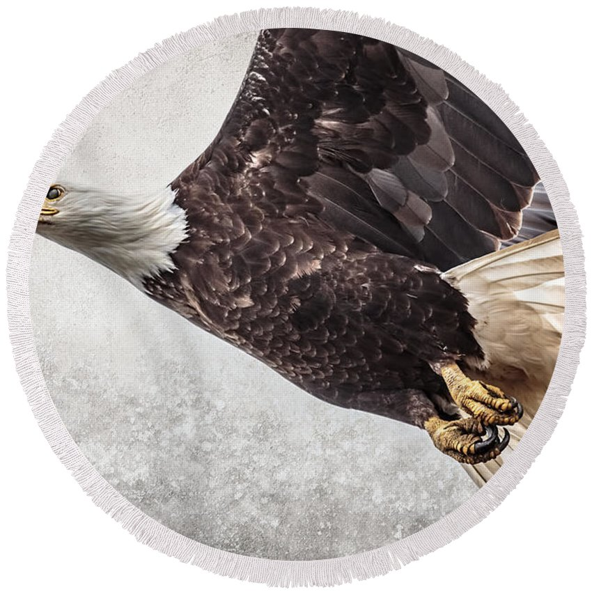 Bald Eagle Fly By Round Beach Towel featuring the photograph Bald Eagle Fly By by Wes and Dotty Weber