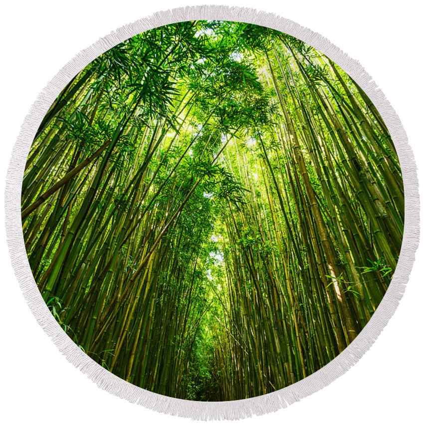 Bamboo Forest Round Beach Towel featuring the photograph Bamboo Sky - The Magical And Mysterious Bamboo Forest Of Maui. by Jamie Pham