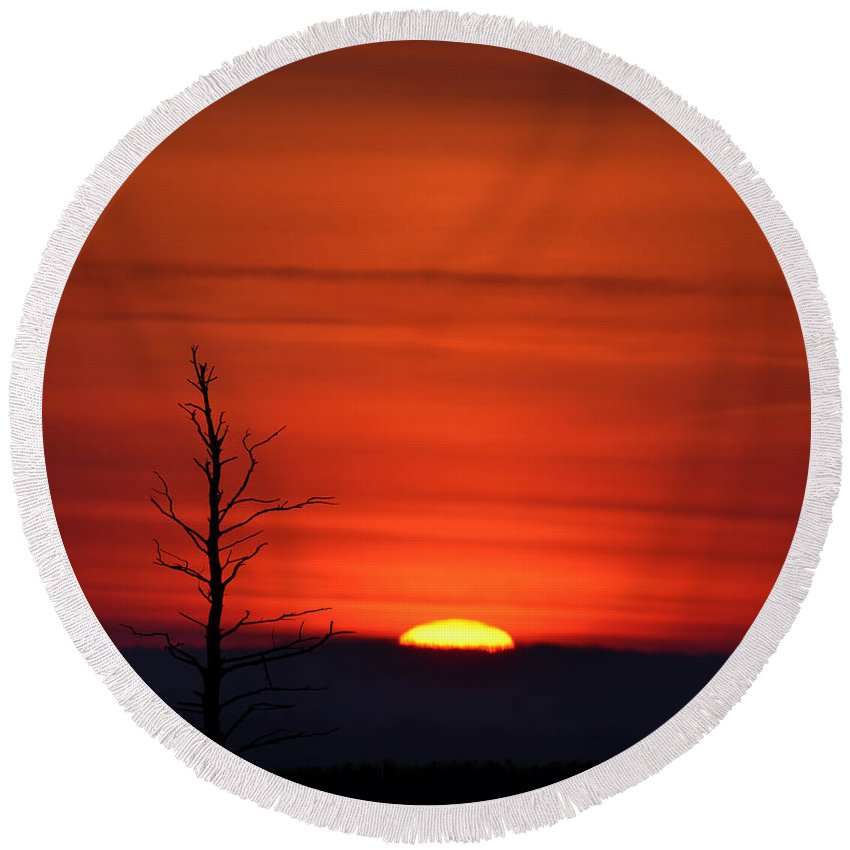 Bare Round Beach Towel featuring the photograph Bare Tree Sunrise by Bill Cannon