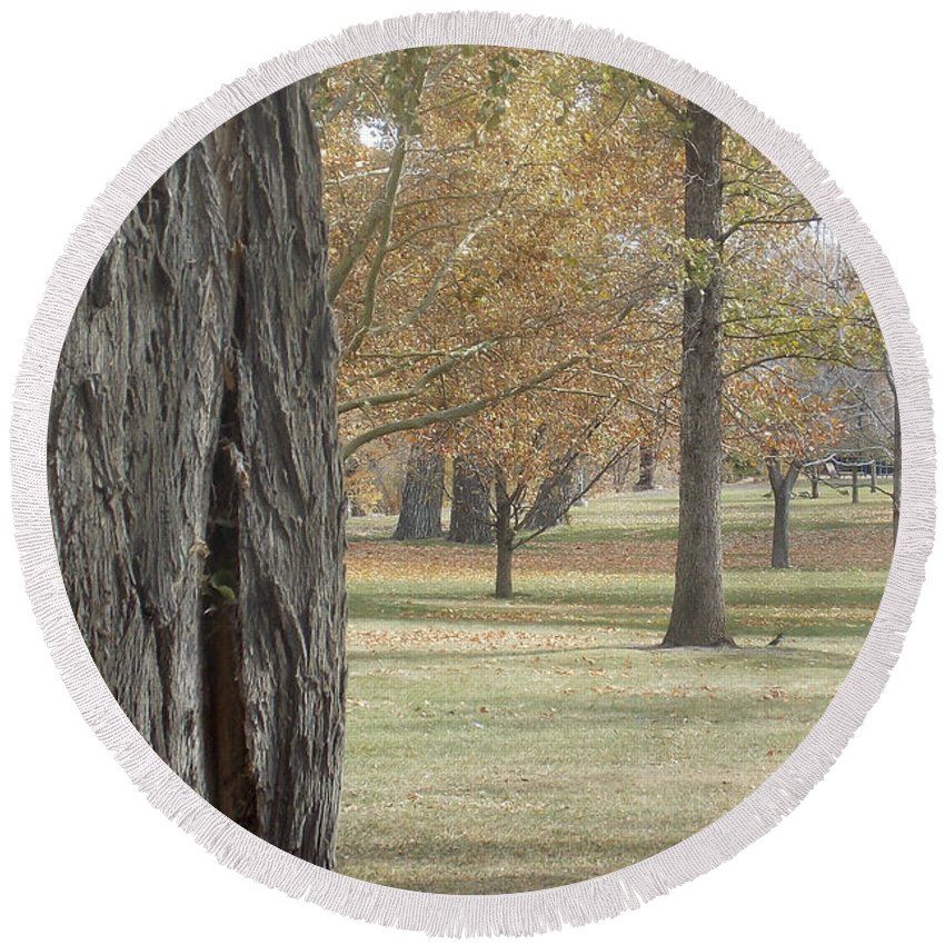 Tree Round Beach Towel featuring the photograph Bark by Brent Dolliver