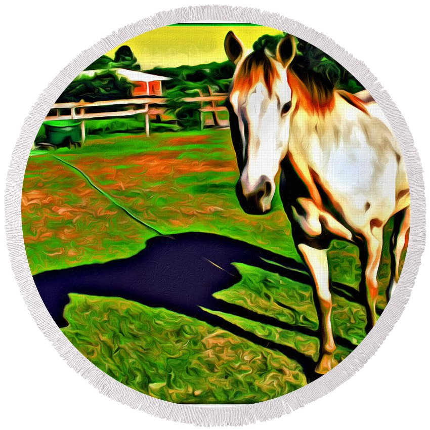 Horse Barn Reflection Round Beach Towel featuring the photograph Barn Horse by Alice Gipson