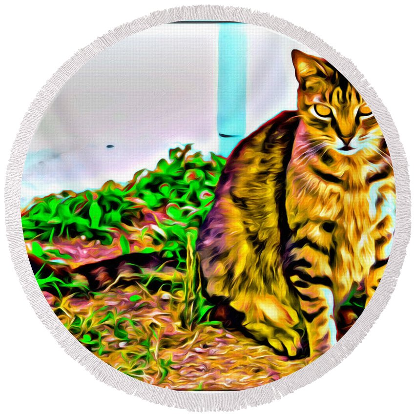 Cat Kitty Brown Tabby Round Beach Towel featuring the photograph Barn Kitty by Alice Gipson