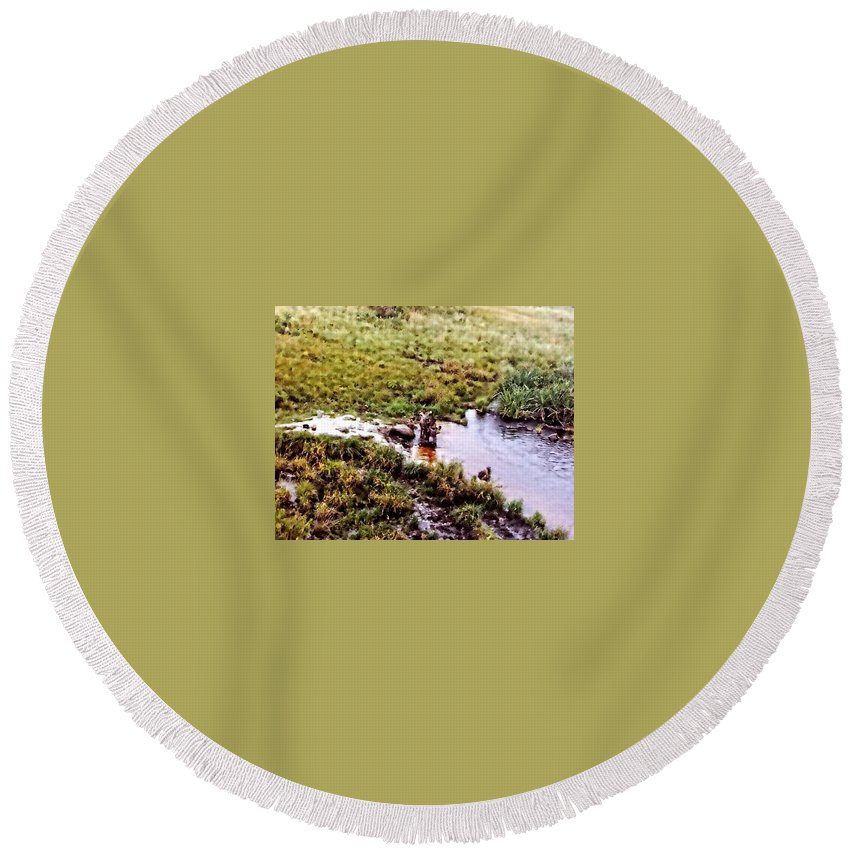 Africa Round Beach Towel featuring the photograph Bathing by Image Takers Photography LLC