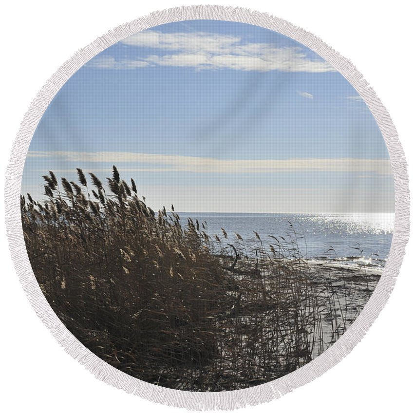 Reeds Round Beach Towel featuring the photograph Bay Breeze In Winter by Terry DeLuco