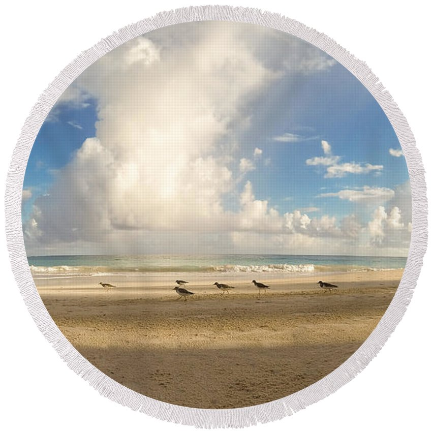 Antigua And Barbuda Round Beach Towel featuring the photograph Beach Birds by Ferry Zievinger