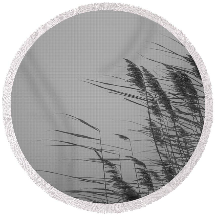Island Of Ruegen Round Beach Towel featuring the photograph Beach Grass by Ralf Kaiser