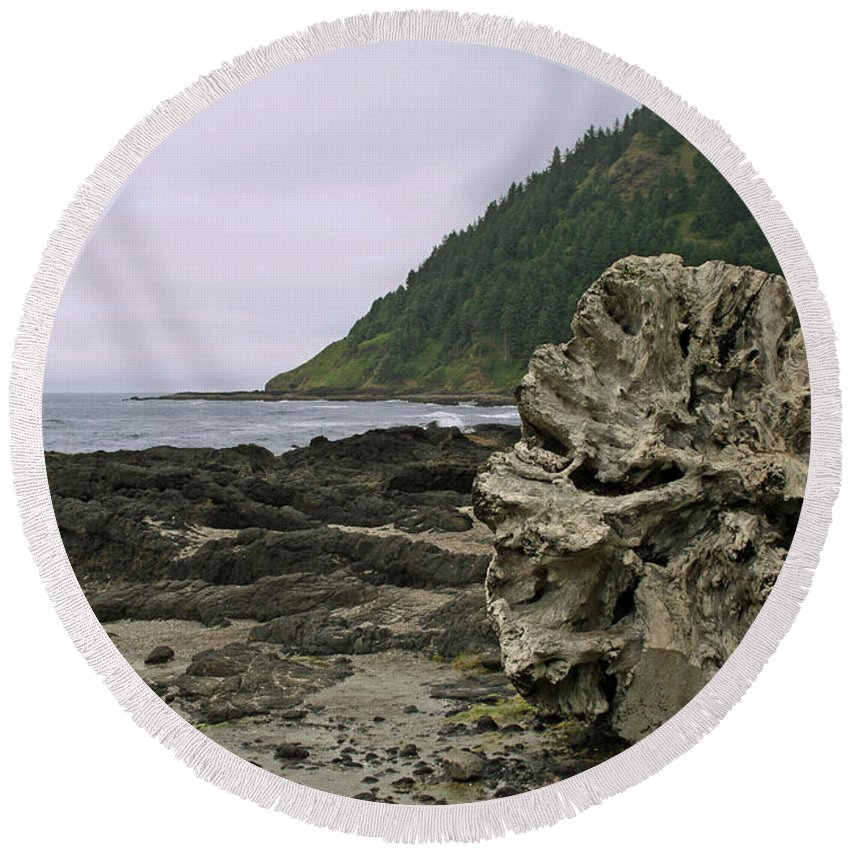 Drift Wood Round Beach Towel featuring the photograph Beached by Ben Zell