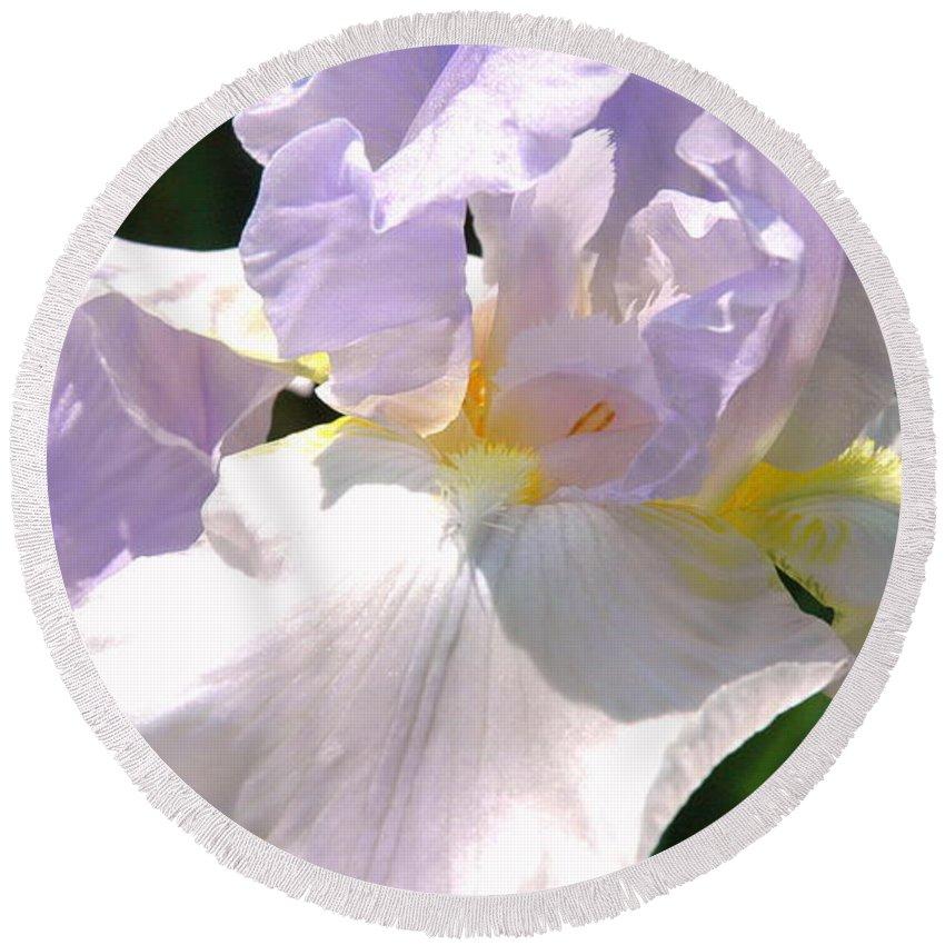 Bearded Iris Round Beach Towel featuring the photograph Bearded Iris by Roe Rader
