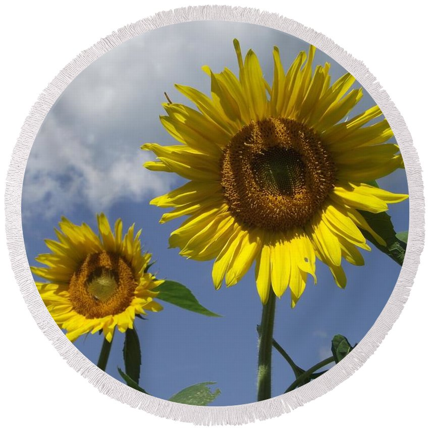 Two Yellow Sunflowers Round Beach Towel featuring the photograph Beautiful by Michelle Welles