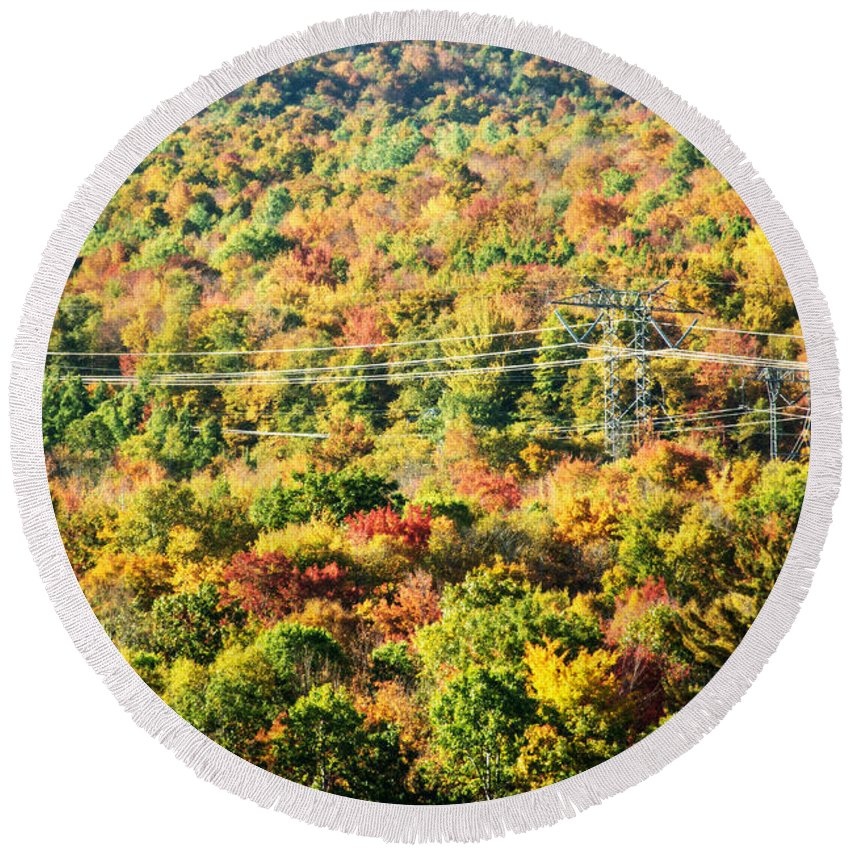 Trees Round Beach Towel featuring the photograph Beauty And The Grid by Sherman Perry