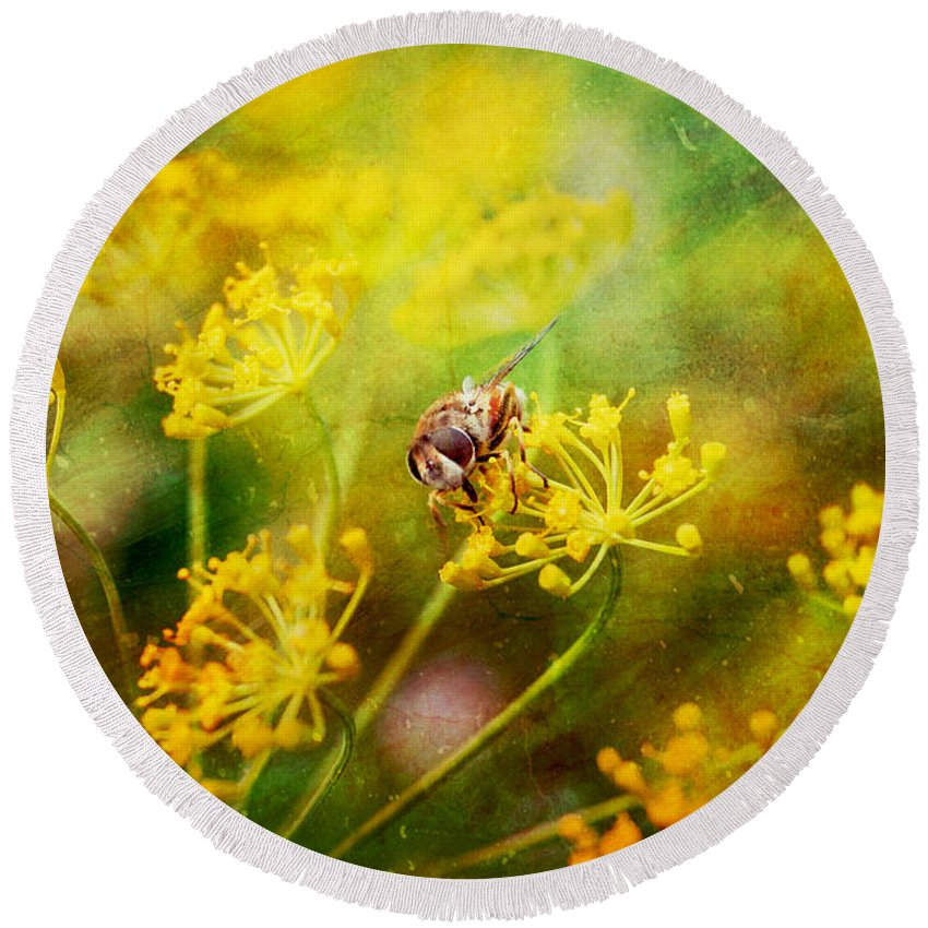 Bee Round Beach Towel featuring the photograph Bee by Justyna JBJart