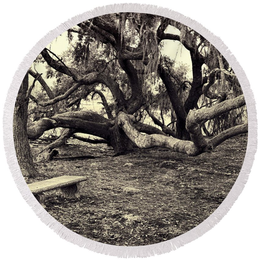 Trees Round Beach Towel featuring the photograph Bench And Trees Bw by David Arment