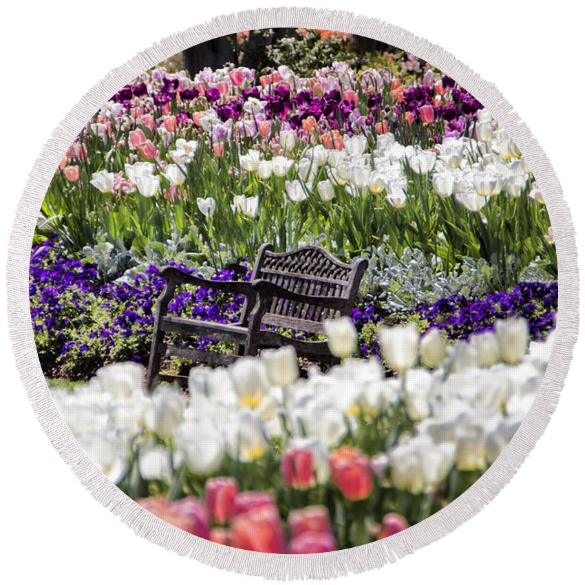 Tulips Round Beach Towel featuring the photograph Bench Between The Tulips At Dallas Arboretum by Douglas Barnard