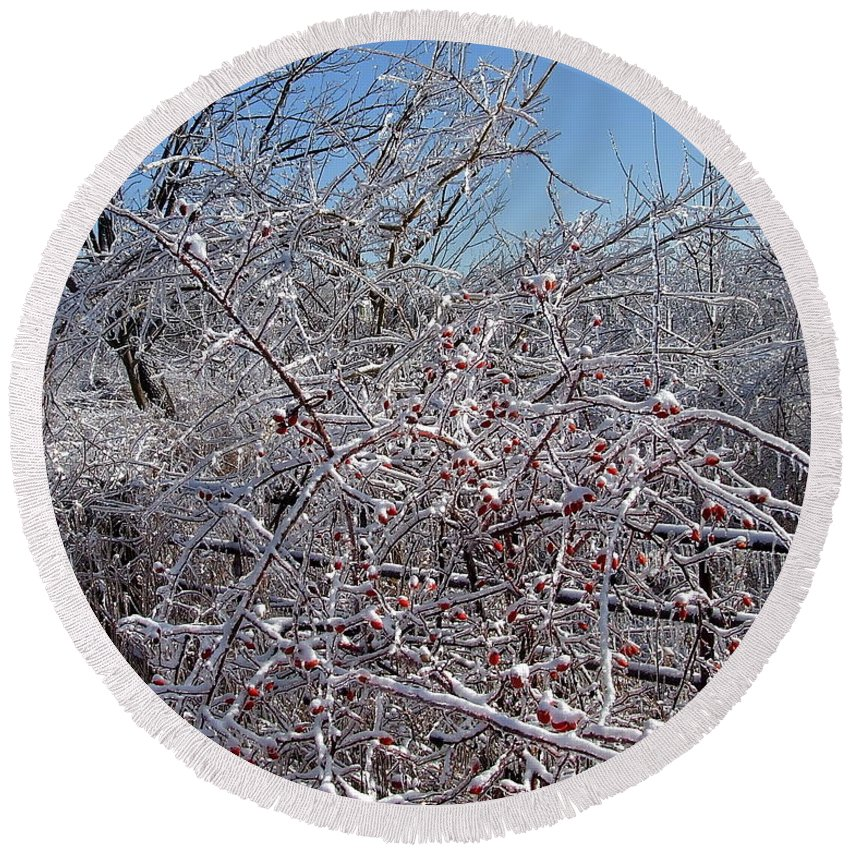 Bare Round Beach Towel featuring the photograph Berries In Ice by Susan Wyman