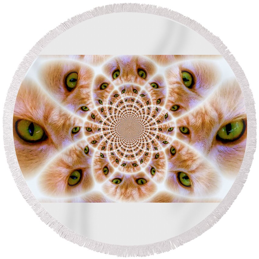 Cat Round Beach Towel featuring the photograph Better To See You With by Sheri McLeroy