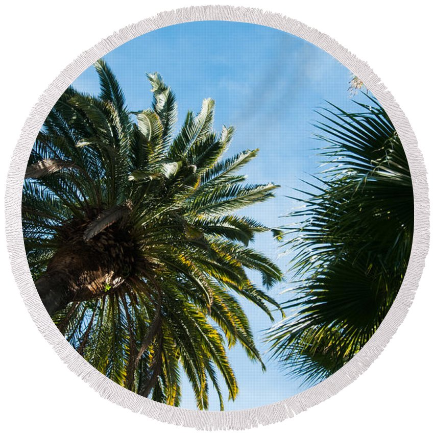 Beverly Hills Round Beach Towel featuring the photograph Beverly Palms by Lee Roth