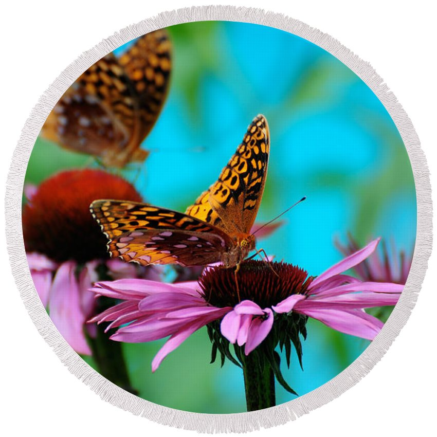 Butterfly Round Beach Towel featuring the photograph Bff Best Friend Flutterbyes by Lois Bryan