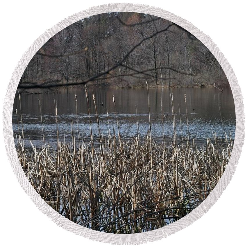 Burke Lake Round Beach Towel featuring the photograph Big Fish by Joseph Yarbrough