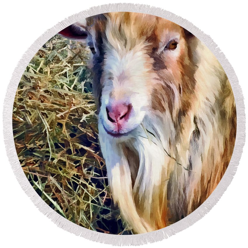 Goat Round Beach Towel featuring the photograph Billy Goat Closeup by Susan Savad