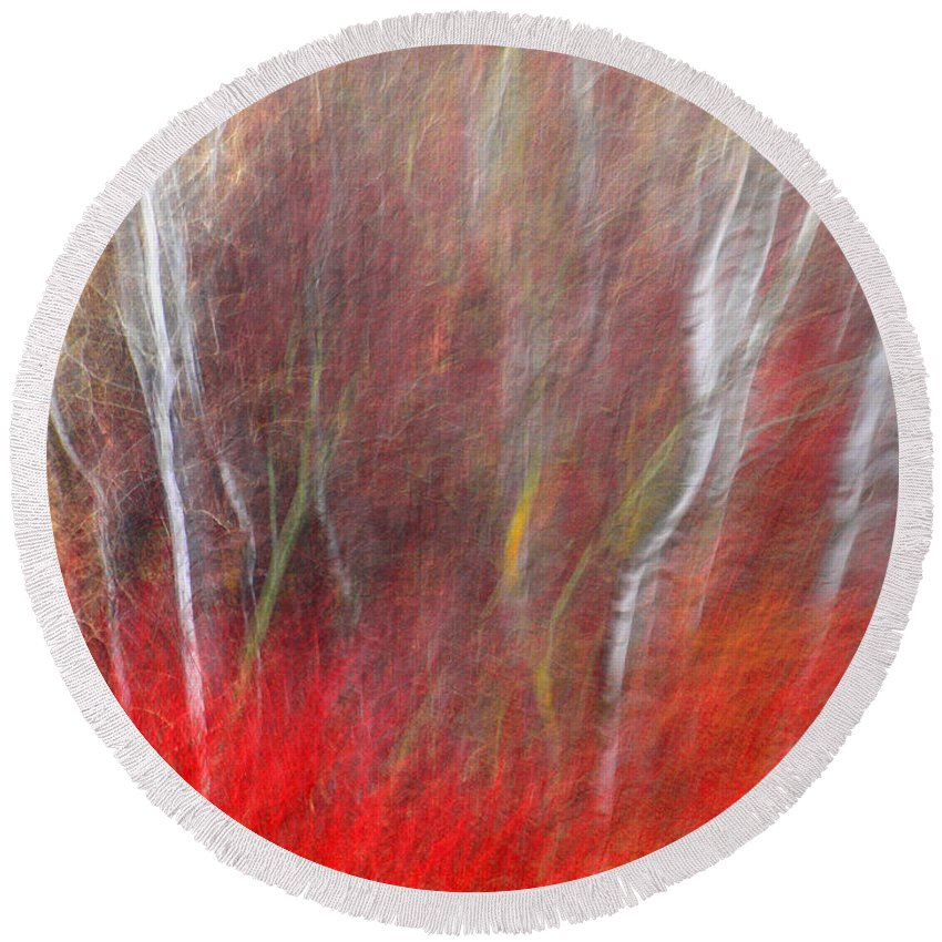 Blur Round Beach Towel featuring the photograph Birch Trees Abstract by Tara Turner