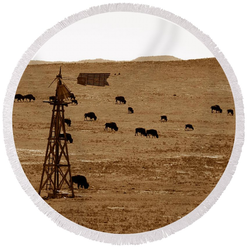 Bison Round Beach Towel featuring the photograph Bison And Windmill by David Lee Thompson