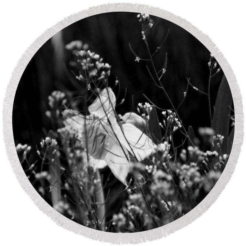 Black And White Daffodil Round Beach Towel featuring the photograph Black And White Daffodil by Tracy Winter