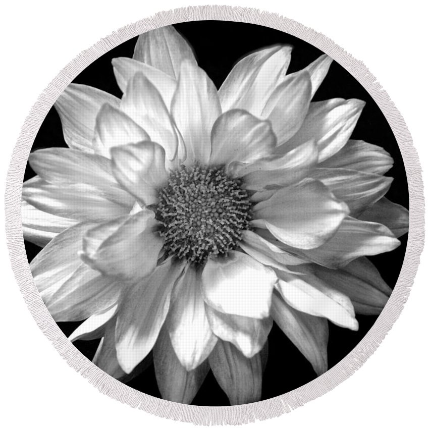 Black And White Flower Print Round Beach Towel featuring the photograph Black And White Zennia by Kristina Deane