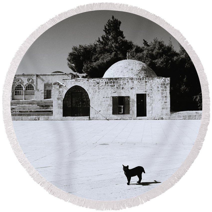 Cat Round Beach Towel featuring the photograph Black Cat by Shaun Higson